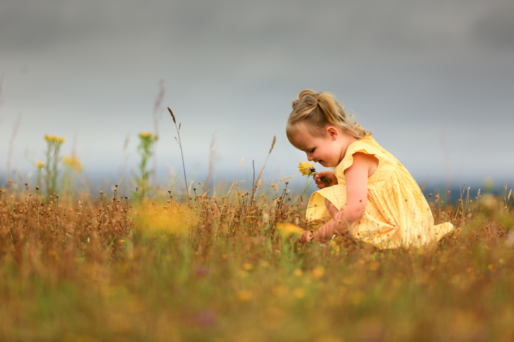 during a family photoshoot in Hampshire a young girl picks buttercups