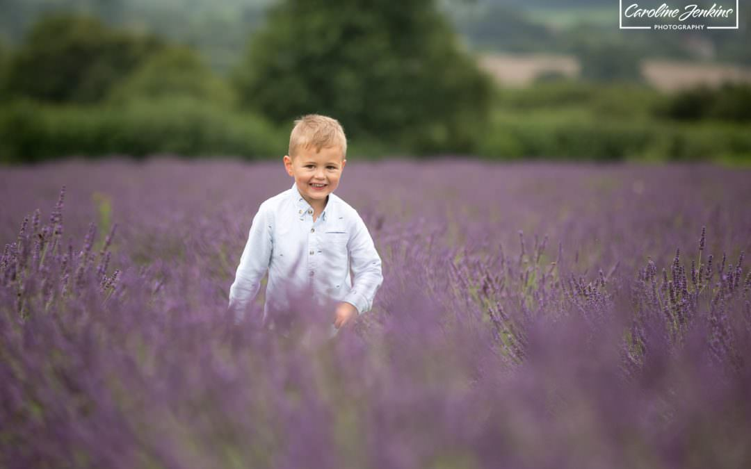 The Lavender Fields Mini-Shoots