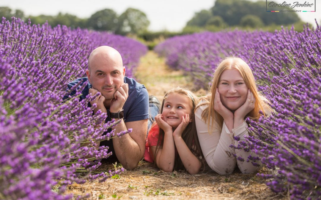 The Best of the Lavender Shoots – The Matthews Family