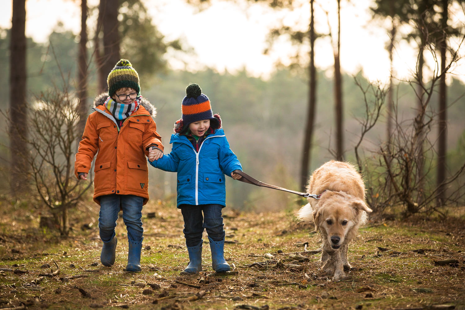 family portraits in winchester - two brothers walking the dog