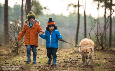 Why Should You Include Your Dogs in Family Photo Shoots?