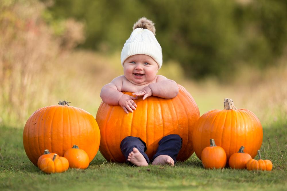 baby sits in a pumpkin during a baby pumpkin shoot