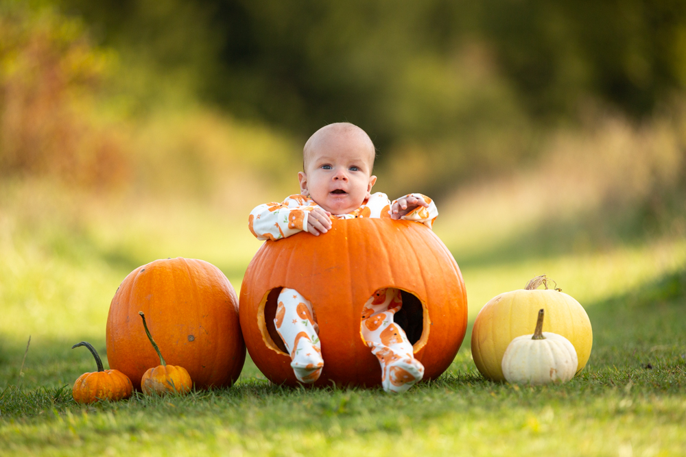 baby pumpkin shoot in chandlers ford