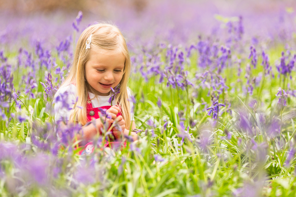 bluebell shoot in winchester - girl looking at bluebells in hand