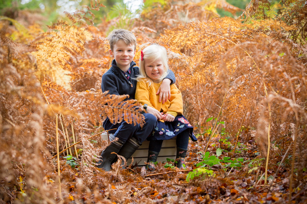 brother and sister cuddle amongst autumn leaves during a photo shoot in chandlers ford