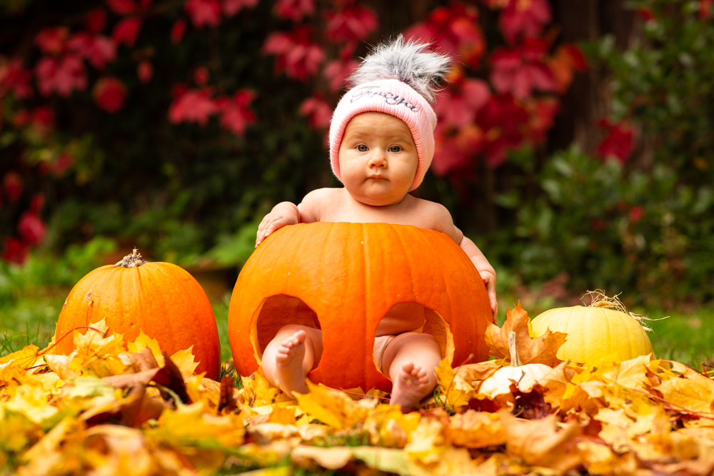 baby sitting in a pumpkin during a baby pumkin shoot in chandlers ford